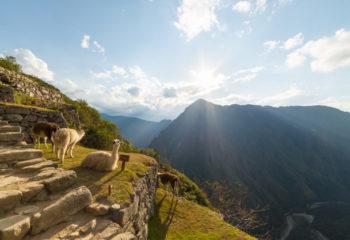 Las 10 mejores cosas que hacer en la costa sur de Perú