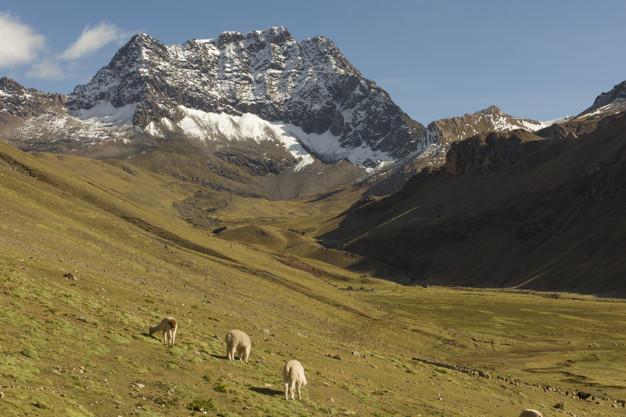 """Sumérgete en los Andes escuchando """"El Paso del Cóndor"""""""