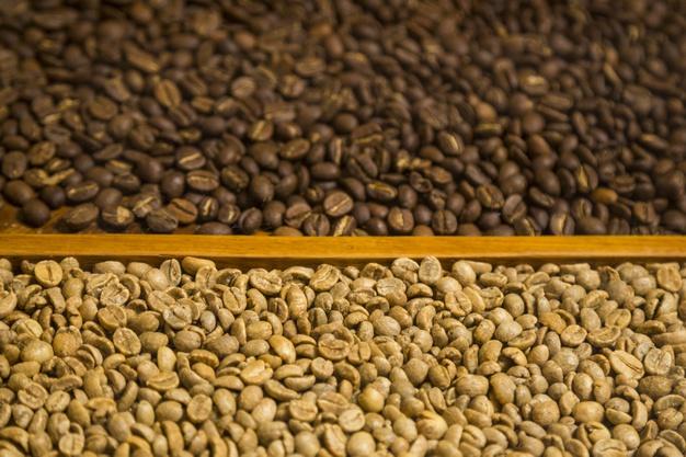 Sumergirse en café y chocolate de cosecha propia