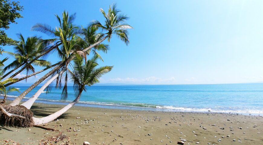 10 cosas para experimentar en el lado caribeño de Costa Rica