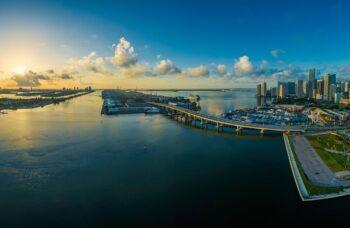 Mantente curioso: Experimenta Miami desde casa