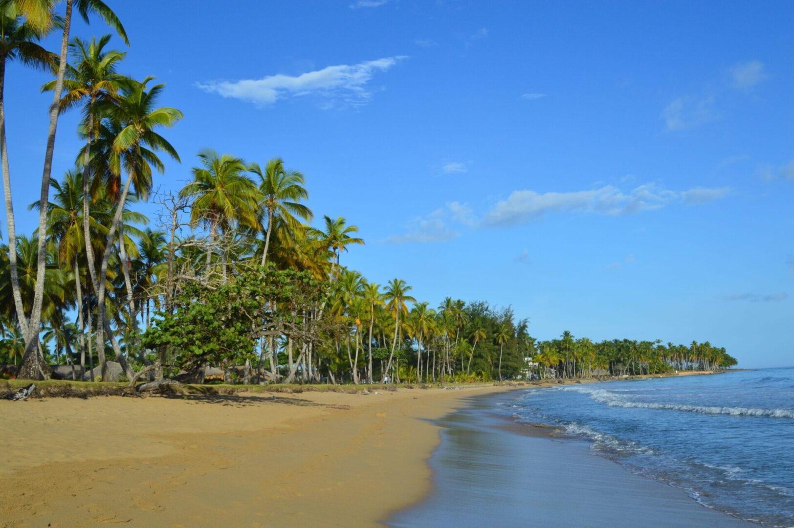 Playa de Punta Uva